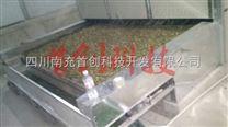菊花干燥机