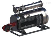 微壓相變鍋爐