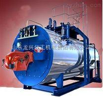 龍興--電加熱蒸汽鍋爐