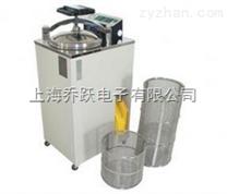 全自动高压蒸汽灭菌锅,蒸汽灭菌锅