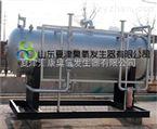 污水处理臭氧发生器-北京大型臭氧机