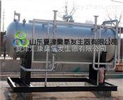 廣東化工-生活-食品污水脫色除臭臭氧發生器