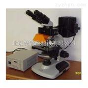 落射荧光显微镜