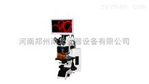 高精度荧光显微镜供应商
