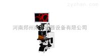 高精度熒光顯微鏡供應商