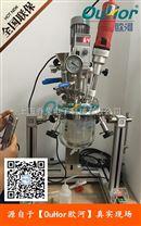 微型实验室反应釜