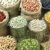 五谷杂粮熟化设备 微波熟化生产线